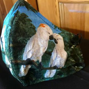 2-15 Moluccan Cockatoo Medium-Petite, Large $18.00