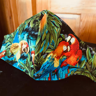 #2-14 Macaws in Jungle- med, lrg $18.00