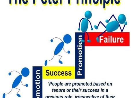 The Peter Principle – How It's Been Hurting YOUR Career! (and your money by extension)