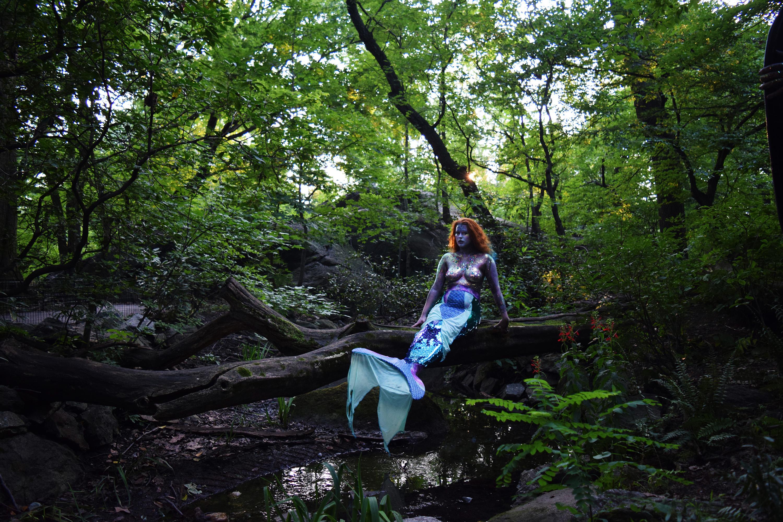 Mermaid in the Woods