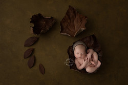 bergen county newborn photographer