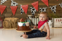 cake smash bergen county
