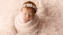 Best NJ Newborn  Photographer  | Molly newborn session.