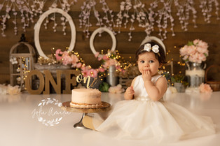 Cake Smash Photographer New Jersey Bergen County  | Bianca is one!
