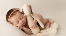 NJ Newborn  Photographer  | Sofia newborn session.