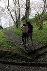 桜階段fin.jpg