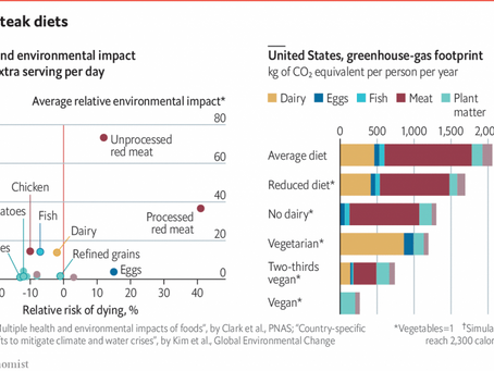 [EN] Economist: How much would giving up meat help the environment?