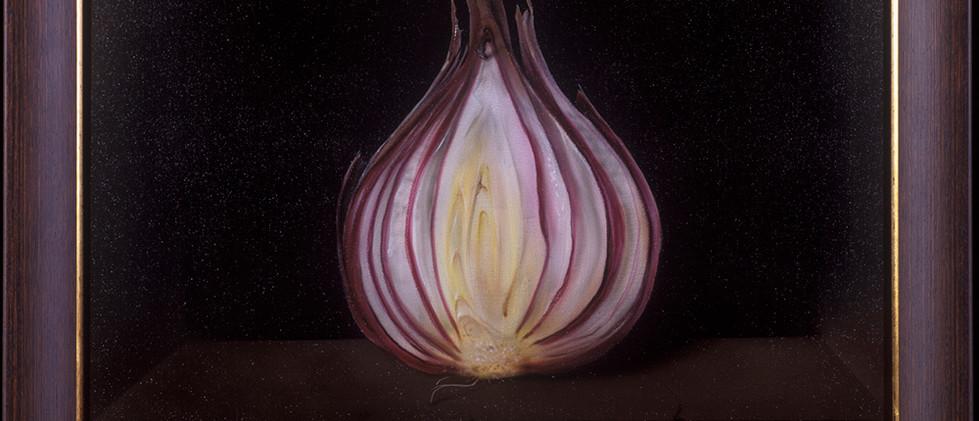 Half a Red Onion