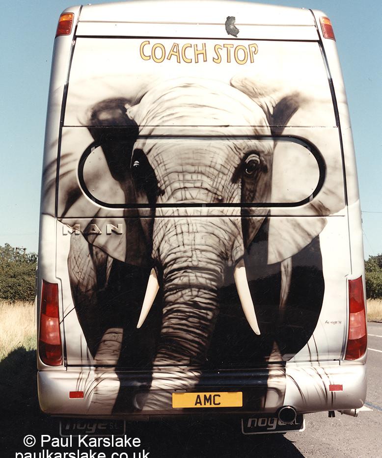 Elephant coach