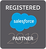 70435188-2019-salesforce-partner-badge-r