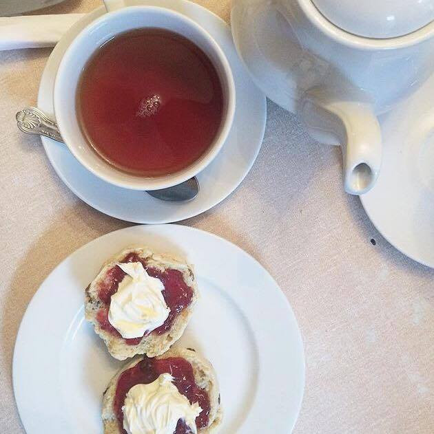 Best Scones in York with clotted cream and jam