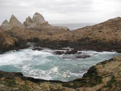 IMG_6515 Sea Lion Cove.JPG