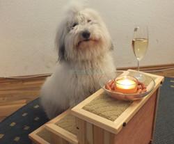 Scala erster Geburtstag W