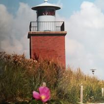 Olhörn auf Föhr 1997