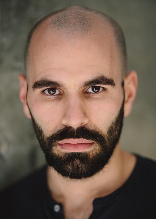 Dimitri Meskouris