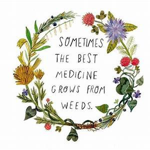 Time is an herb that cures all Diseases.