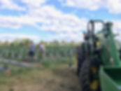 farm-july-2019-v2.jpg