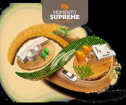 MOMENTO SUPREME