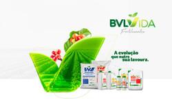 BVL VIDA