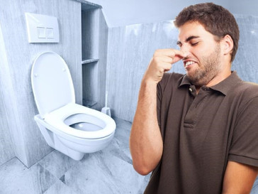 5 reasons your bathroom smells like a sewer (and how to fix them!)