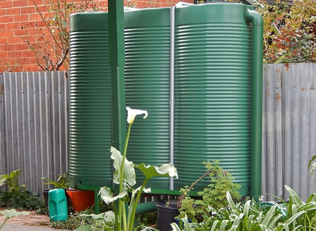 Sustainable Plumbing: Why invest in a Rainwater Tank