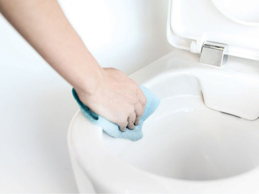 Product Trend: Rimless Toilet