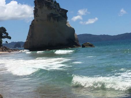 Tagestour auf die Coromandel Halbinsel