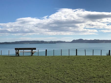 Beautiful Pohutukawa Coast - Half Day Tour  Magnificent views of the Coromandel Peninsula and the is