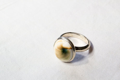 Eye of Shiva Seashell-Sterling Silver Ring