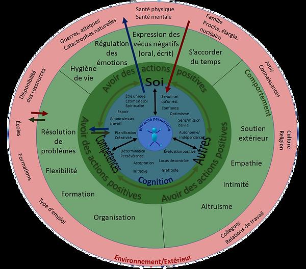 Modèle M.I.R.E, Modèle de résilience pratique