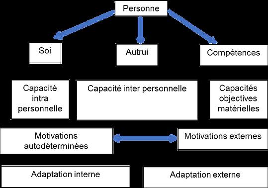 Schéma de résiliene. Soi, les autres, compétevnces. Capacités inter personnelles. Capacités intra personnelles. Motivations externes. Motivation autodéterminée, motivation autonome. Adaptation externe. Adaptation interne.
