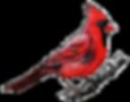 cardinal_ajusté_inversé.png