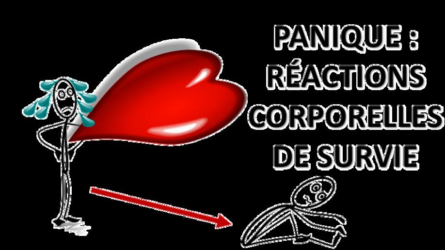 PANIQUE.png