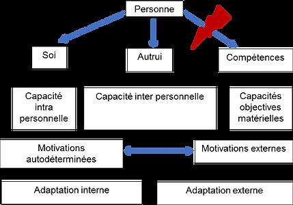 Caractéristiques de profil de résilience, Psychologue Montréal, Clinique Psychoogique,Résistance Koala, Compétences atteintes, Motivation autonome ou externe par approbation des autres.