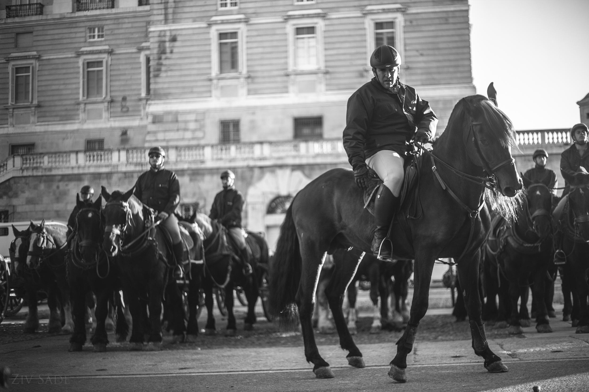Madrid 2014
