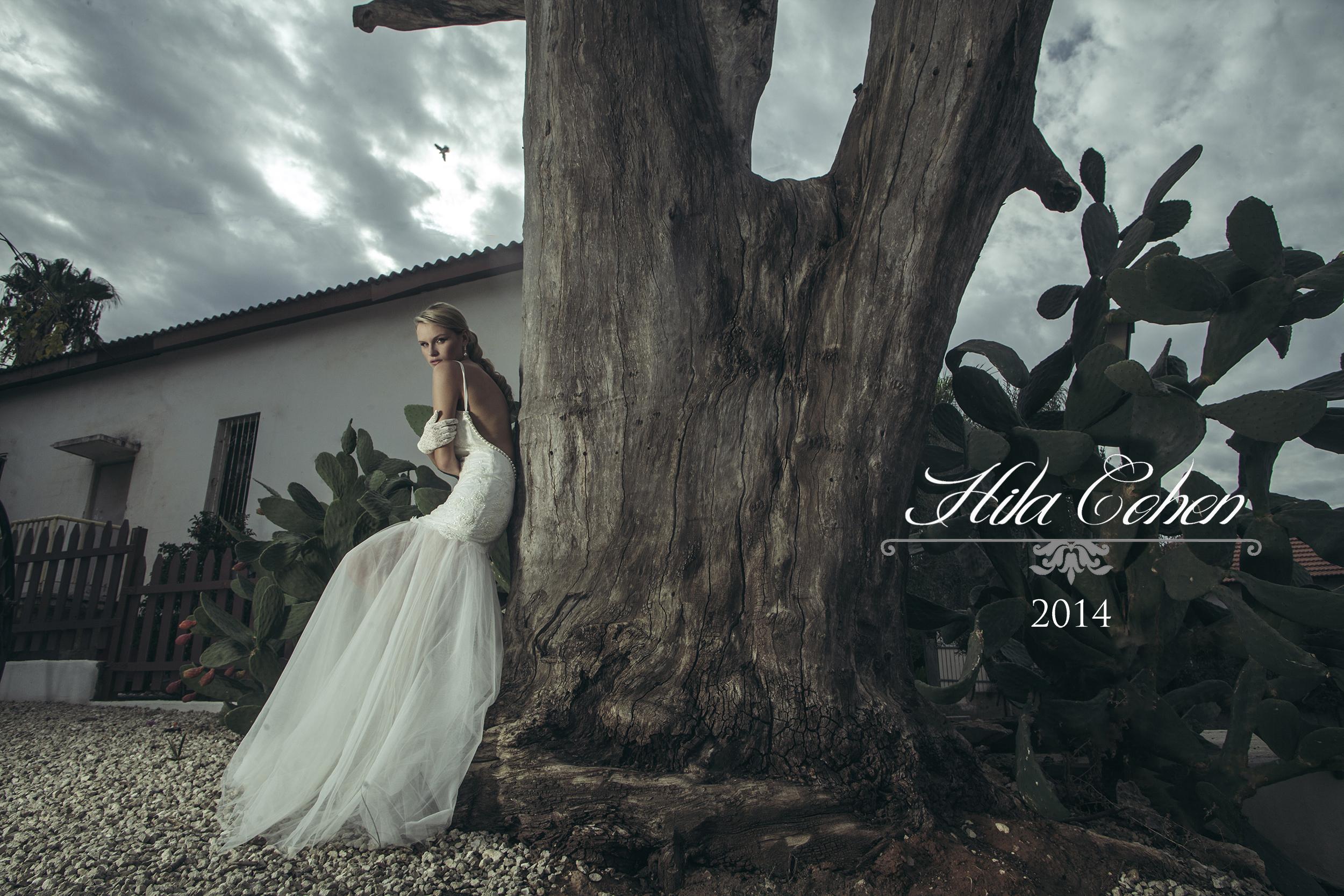Hila Cohen 2014