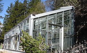 Alpin Jardin, Champex 2013.jpg