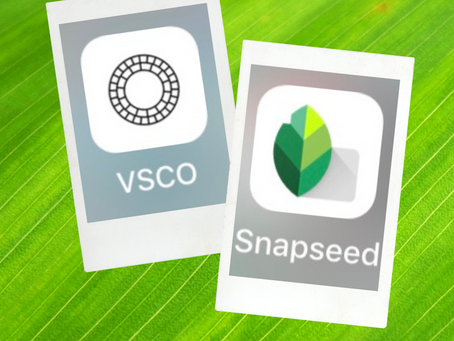 VSCO and Snapseed - how and why to use these apps