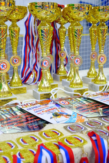 Первенство Республики Башкортостан по самбо, посвященное 30 годовщине вывода войск Советской Армии и