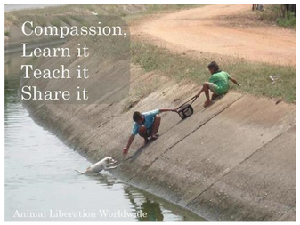 Day #2 of '12 Days of The 12 Cs' - COMPASSION