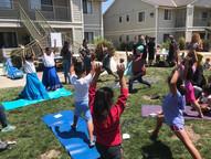 Yoga at Festival photo.jpg