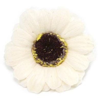 10x Craft Soap Flowers - Sml Sunflower - Ivory