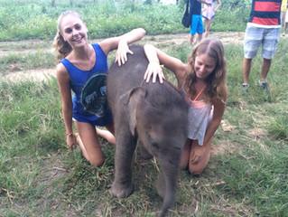 ¡No te pierdas lo mejor de Tailandia! Parte II