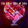The Other Side of Love.jpeg