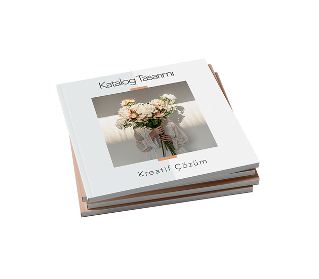 Katalog / Dergi