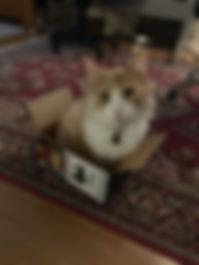 Basie 1.jpg