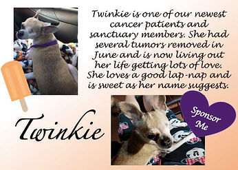 Twinkie 1.jpg