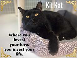 Kit Kat 4.jpg