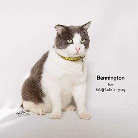 Bennington 3.jpg