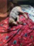 Baby Girl 2.jpg